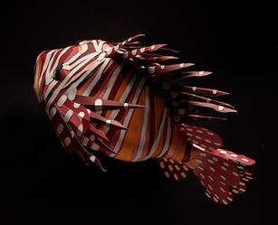 Paper_Animals_ClownFish.jpg