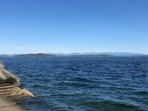 Olympic Mountains from Alki Beach, West Seattle, WA (author's picture)