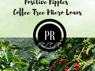 PR Blog Series: Coffee Trees
