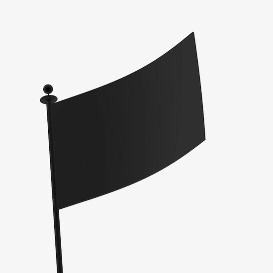 Flag, 2017