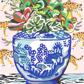 Succulents in Ginger Jar
