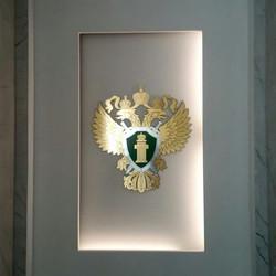 Очень крутой герб получился 🇷🇺_#студия
