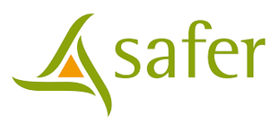 Safer.png