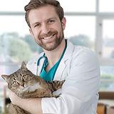 Visita ao veterinário