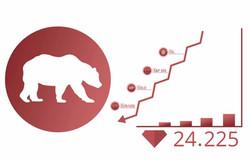 Bear v Bullish