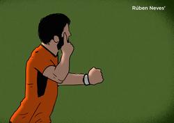 Wolves - Ruben Neves