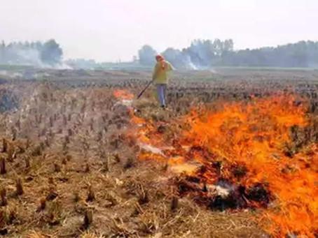 Stubble Burning: A recurring menace