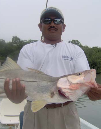 Belize7.jpg