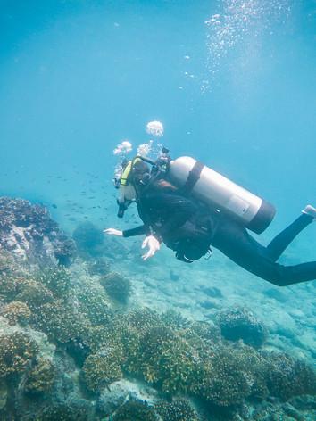 diving_underwater.jpg
