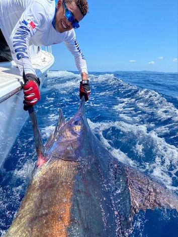 Marlin catch fishing panama.jpg