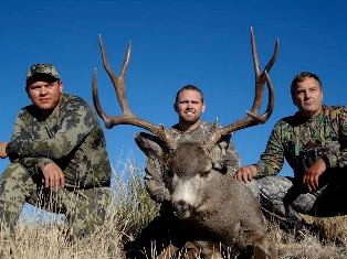 arizona-elk-hunting.1.jpg