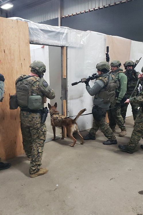K-9 Integration with Tactical Operations