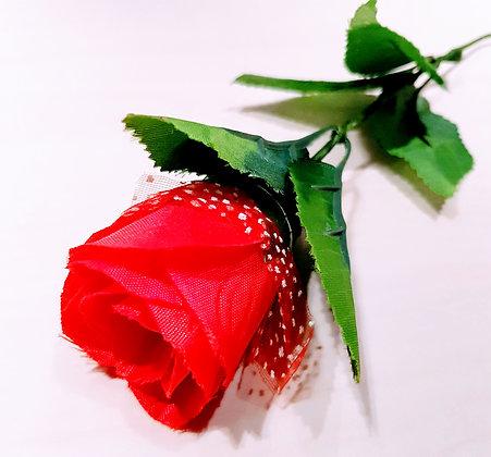Light in the Rose