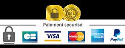 checkout-paiement-securise-ssl.png