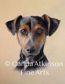 Jude by Canda Atkinson