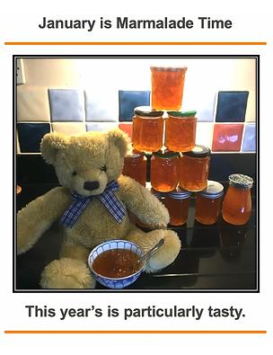 Karen Eyres' teddy loves marmalade