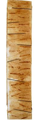 Gwyneth Harris Rusty sticks