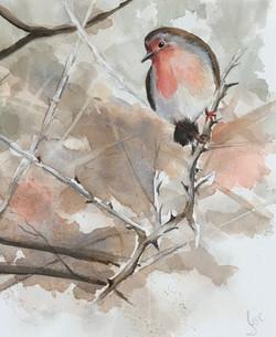 Autumn Robin - SOLD