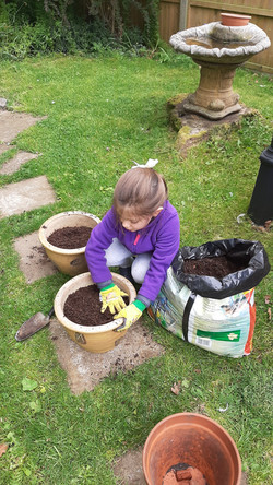 Home Schooling - learning about planting flowers