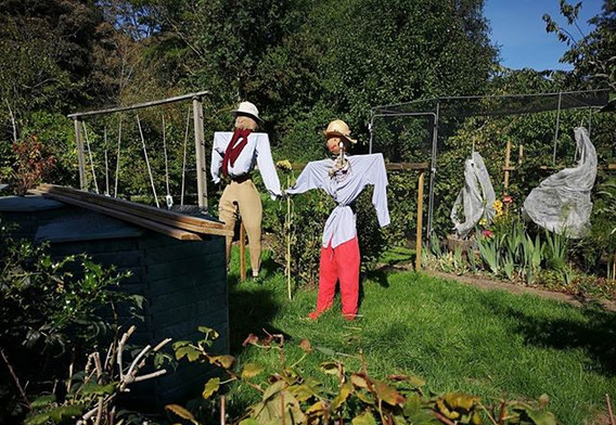 Two scarecrows guarding the veg plot in Church Lane