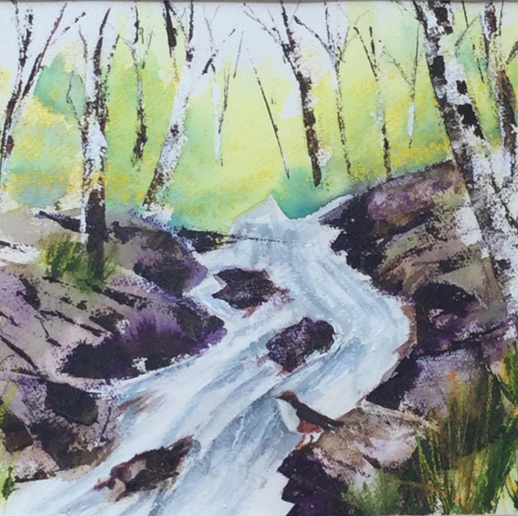 Dipper in Devonshire -Spring