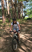 Cycling in Rendlesham Forest