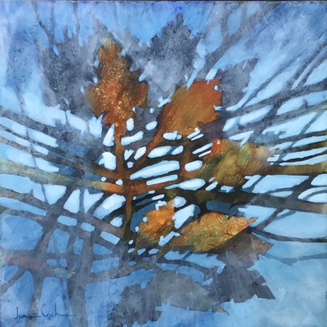(Sm)oak on Water