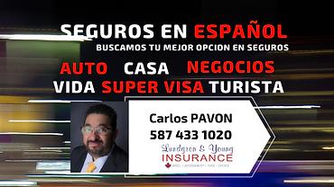 seguros_en_ESPAÑol.png