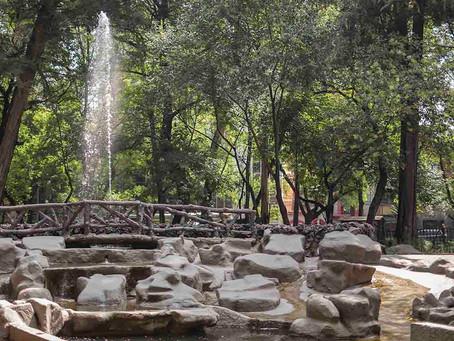 Parque de México