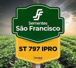 ST 797 IPRO