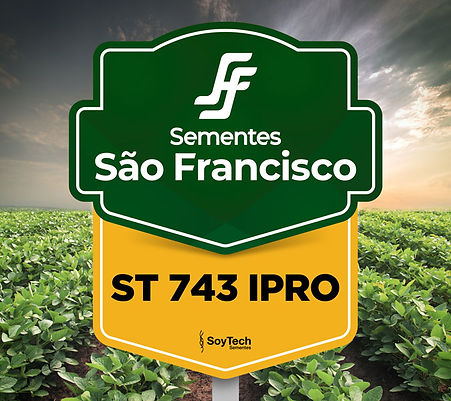 ST 743 IPRO