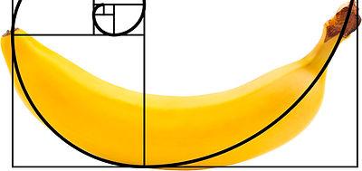 banana ratio.jpg