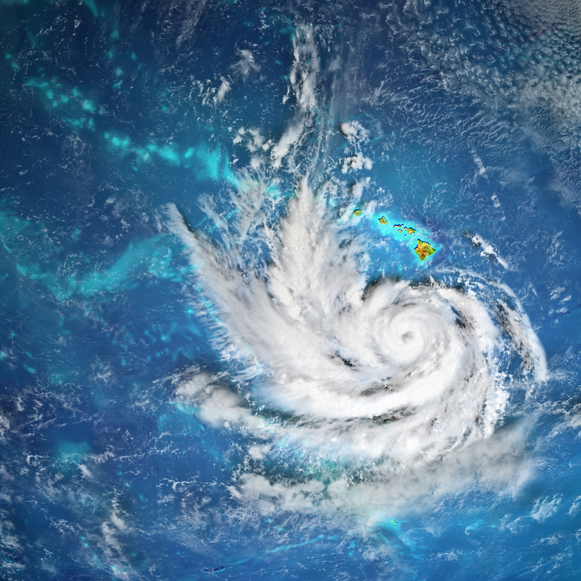Resilience Leadership Academy: Disaster Preparedness
