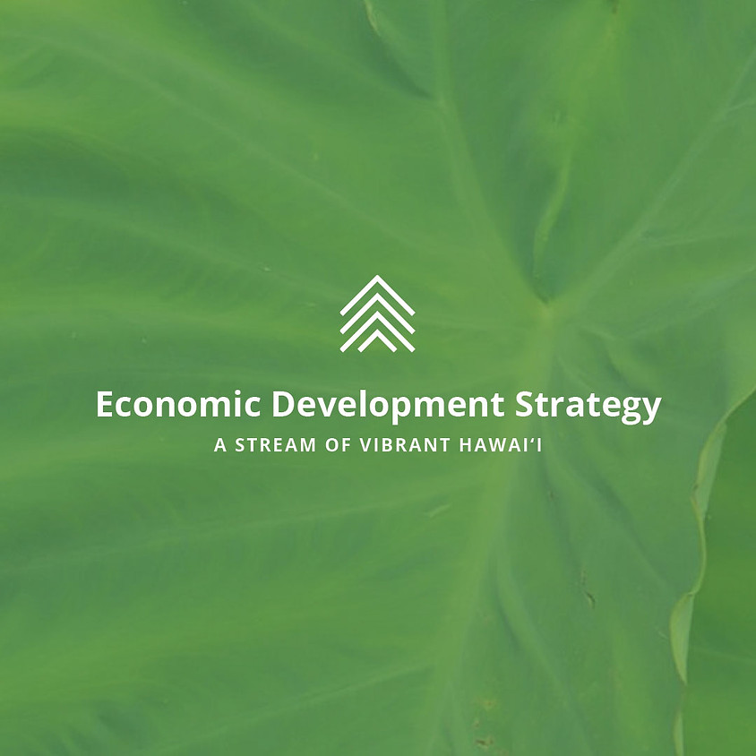 Overview of the Comprehensive Economic Development Strategy