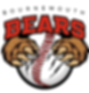 Bournemouth Bears.png