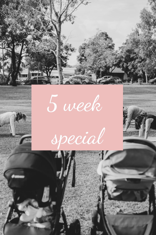Babes 5 Week Block