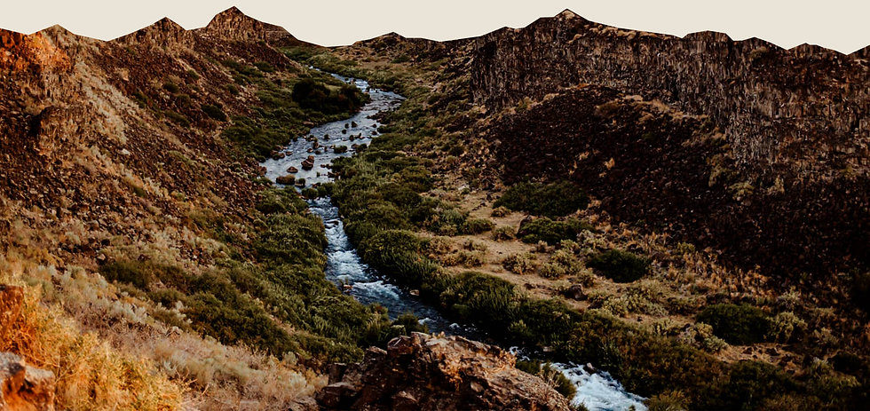 Colorful valley of Box Canyon Springs Preserve in Boise, Idaho.