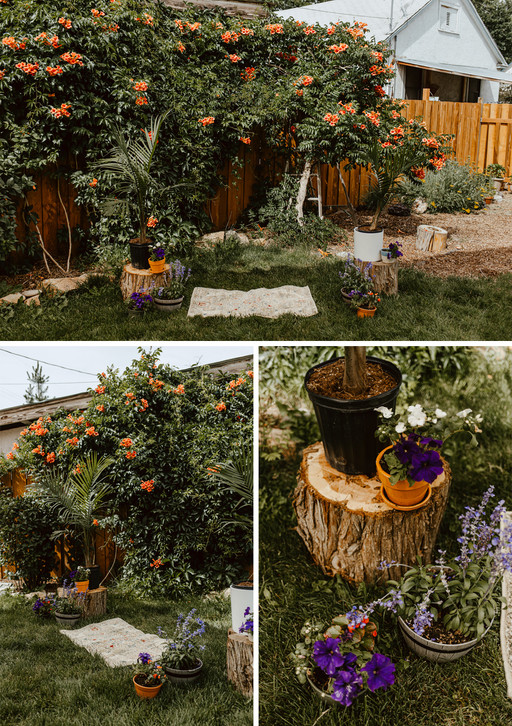 Potted plants on tree stumps around a rug on the ground for the ceremony space.
