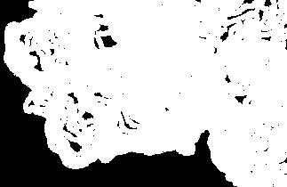 White topographic map line art.