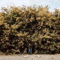 Boise-Engagement-Photographer-Veterans-M