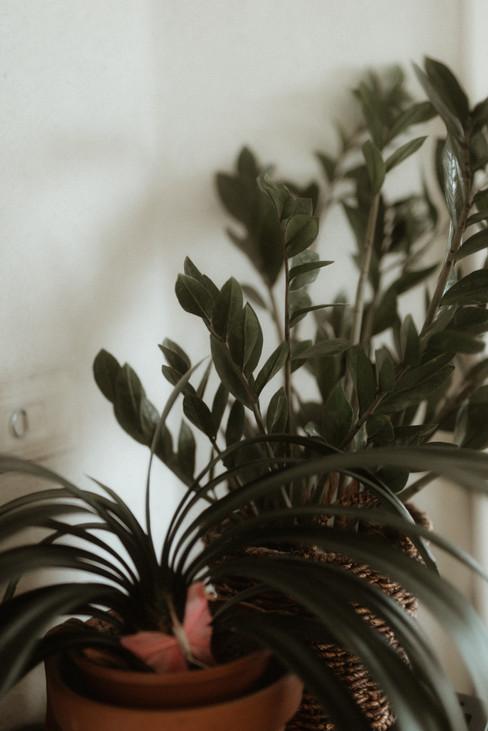 puutalossa-1.jpg