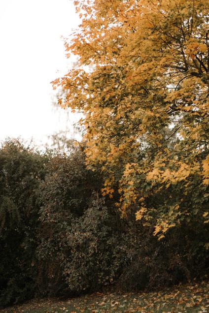 2509-153.jpg