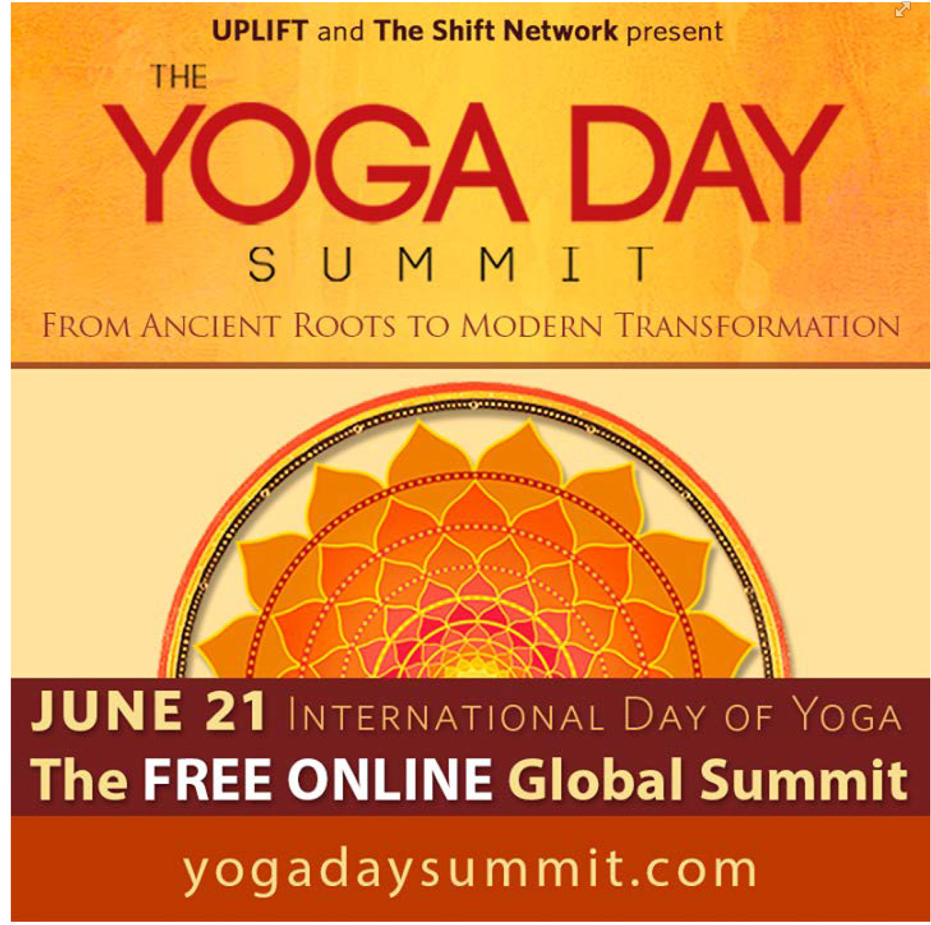 Yoga Day Summit June 2015