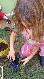 Natureza e Criança: encantamento e curiosidade na Educação Infantil