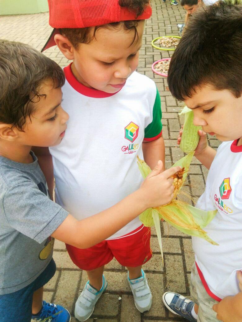 Galileo_Kids_Londrina_Ceianças_de_1_a_5_anos_descobrindo_brincando