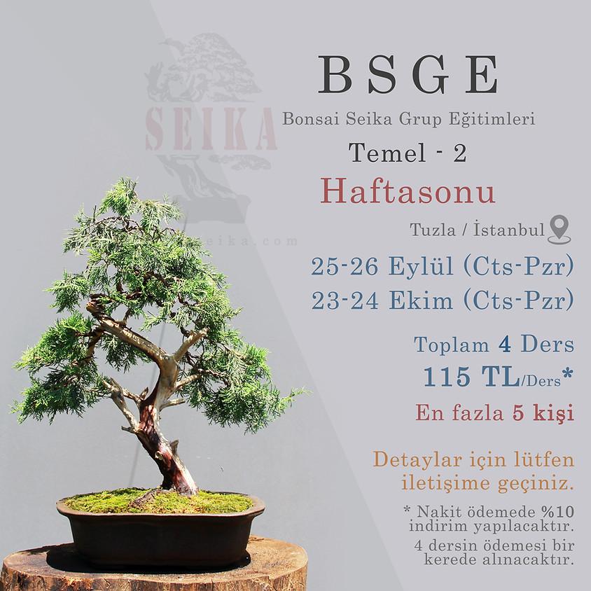 BSGE - Temel 2 - Haftasonu (Bonsai Seika Grup Eğitimleri)