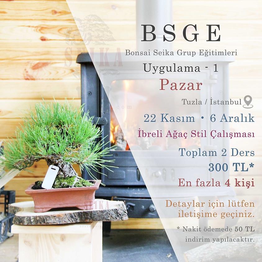 BSGE - Uygulama 1 - Pazar (Bonsai Seika Grup Eğitimleri)