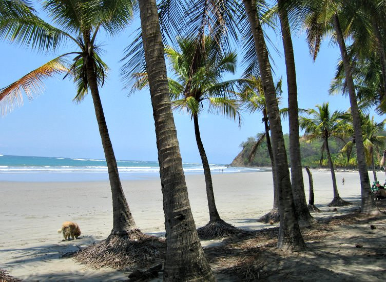 playa samara beach on the Nicoya peninsula in Costa Rica