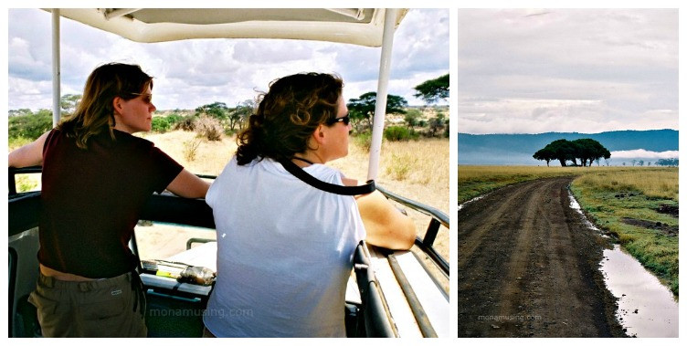 landscapes and wildlife viewing on safari in Tanzania