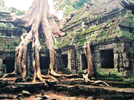 Temples and tragedy: Angkor and Phnom Penh